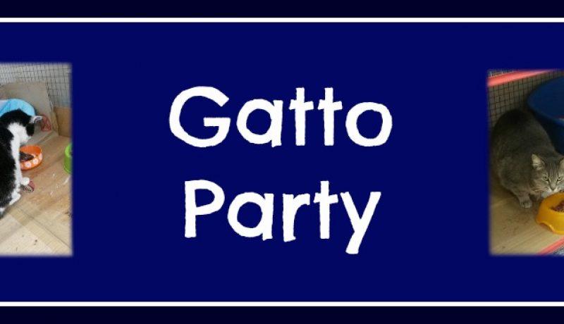 Gatto Party – elezioni 2016